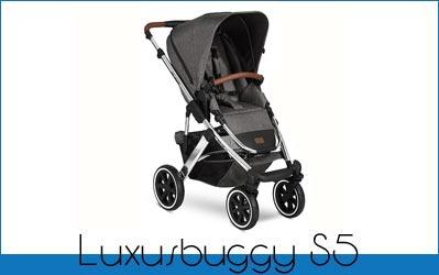 Luxusbuggy S5